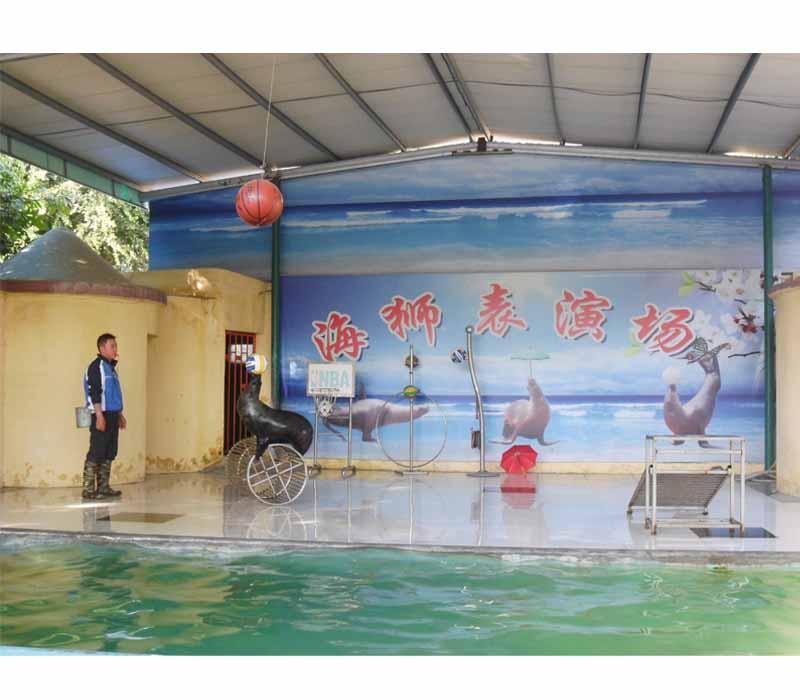 学生旅游_泉州到漳州云洞岩动物园一日游